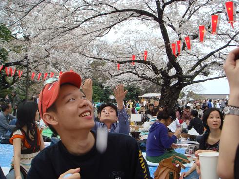 花見+ryo Garyの上野公園お花見パーティですが、すごく良い場所が確保できまして...  r