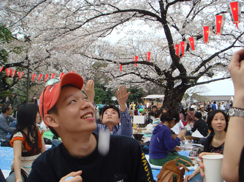 花見+ryo